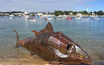 Le Thon à Sainte-Marine